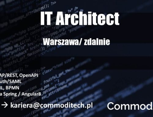 IT Architect (digital)